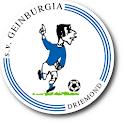 Geinburgia