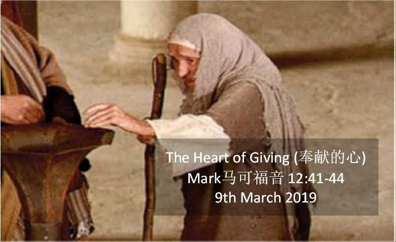 The Heart of Giving (奉献的心)