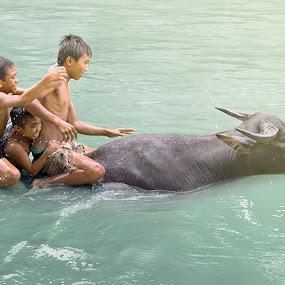 Go !! by Yungki Dblur - Babies & Children Children Candids ( water, nature, children, people, animal )