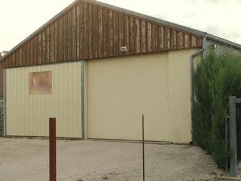 locaux professionels à Saint marcel (71)