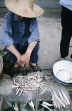Photo: 11092 鎮江/自由市場/魚
