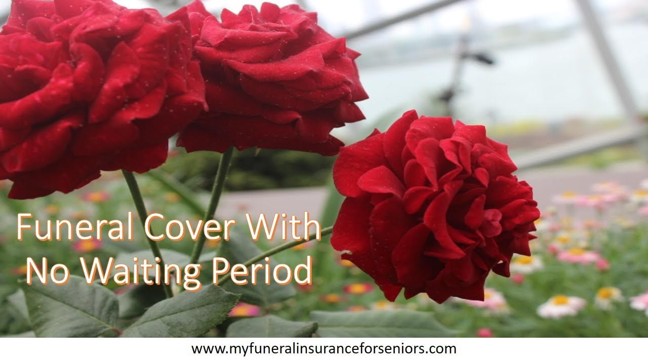 Funeral Cover With No Waiting Period