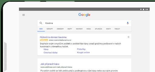 Inzerce ve Vyhledávací síti