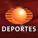 Televisa Deportes US icon