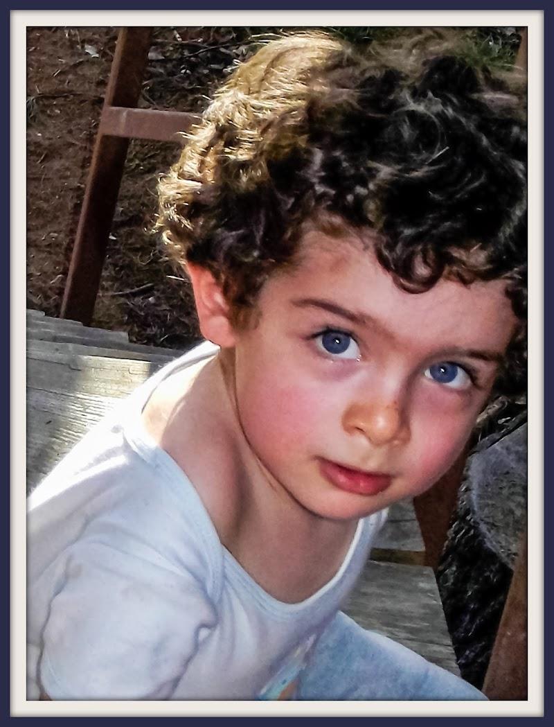 Mio figlio di JILLIAN