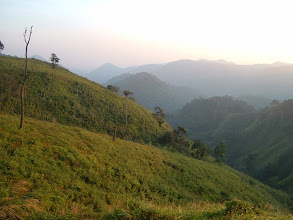 Photo: The landscape of north-western Khao Yai national park's grassland and bushes at 1000 meter