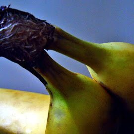 BANANAS FROM THE BACK by Wojtylak Maria - Food & Drink Fruits & Vegetables ( arrangement, fruits, healthy, bananas, sweet, food )