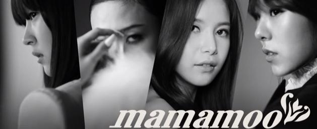 mamamoocontract_2