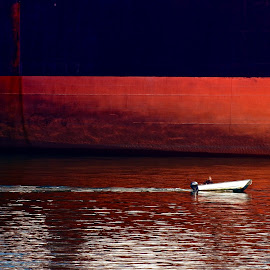 David and Goliath by Campbell McCubbin - Transportation Boats ( contrast, speedboat, freighter, ship, runabout, outboard )