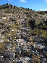 Photo: Restos de calçamento no começo da trilha