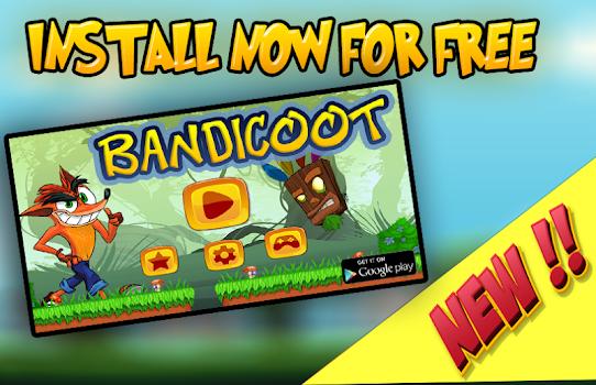 Bandicoot Adventure In Jungle