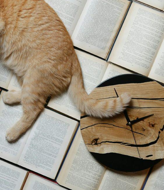 Кот и часы