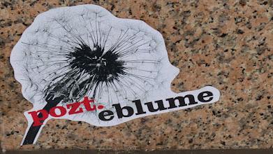"""Photo: Paste-Up; POZT """"Pozt.eblume"""""""