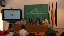 Acto por el Día Internacional de la Luz celebrado enSevilla donde se presentó el índice.