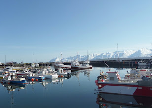 Photo: We had a warm, sunny day at the harbor of Dalvik where we left for our whale watching excursion.