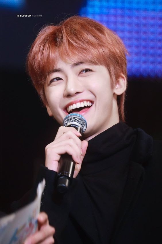 nct dream jaemin