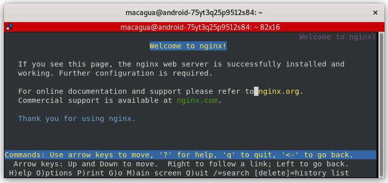 Figura 3 - contenedor Docker de nginx ejecutado