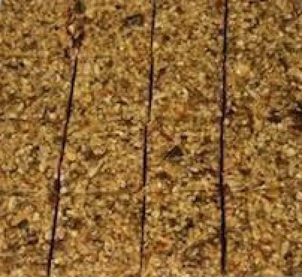 Super Seedy Granola Squares Recipe