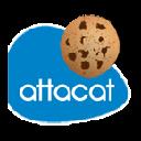 DownloadAttacat Cookie Audit Tool Extension