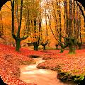 Autumn Wallpaper HD APK