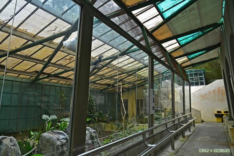 鳳凰谷鳥園雨林園