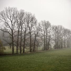 by Ondřej Kašpar - Landscapes Weather
