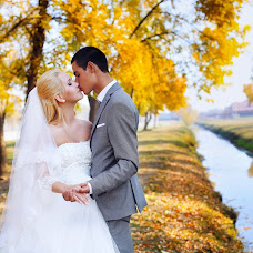 Wedding photographer Lyudmila Gricenko (mila13). Photo of 28.01.2015