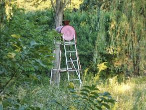 Photo: Shower in the jungle. Private property - Zuhanyzó a dzsungelben, valakié (Bélapátfalva, már lebontották)