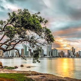 Sunset in B Camboriu Beach by Rqserra Henrique - City,  Street & Park  Skylines ( reflexion, longexposure, buildings, tree, clouds, water, rqserra )