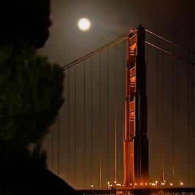North Tower, Golden Gate Bridge by Dan Larsen - Buildings & Architecture Bridges & Suspended Structures (  )