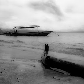 by Arief Ahmad - Landscapes Beaches