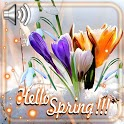 Spring Greetings Live Wallpaper icon