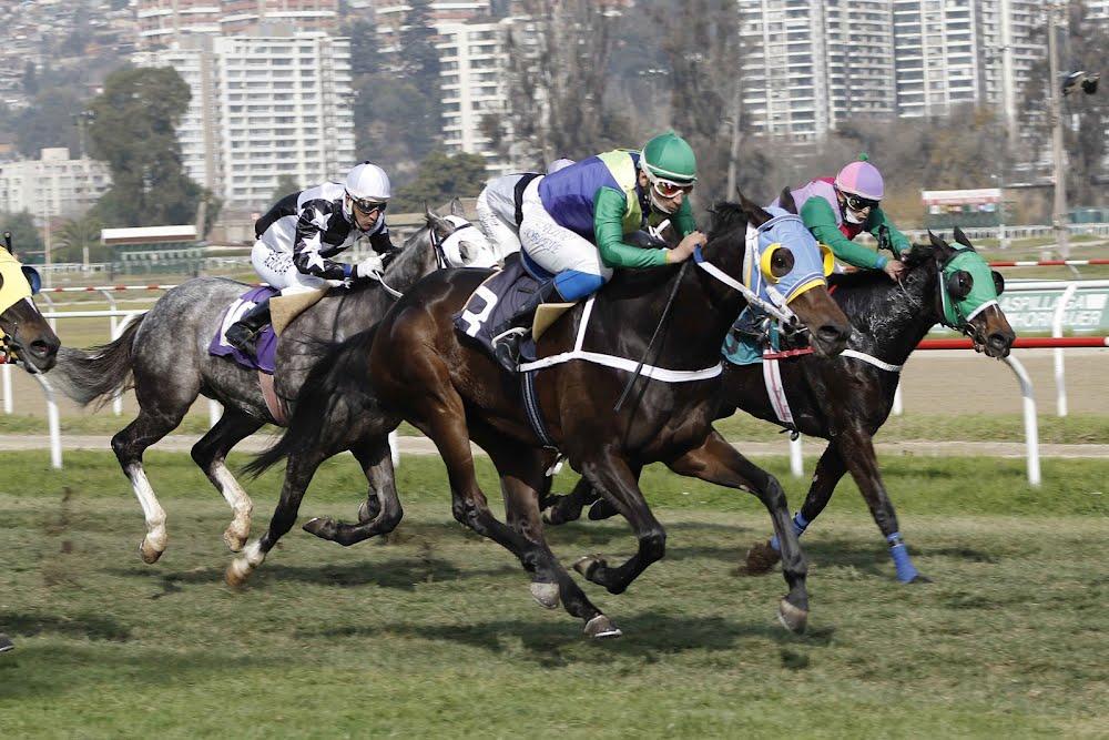 Cieneguilla (Rydilluc) gana Handicap (1000m-Pasto-VSC). - Staff ElTurf.com