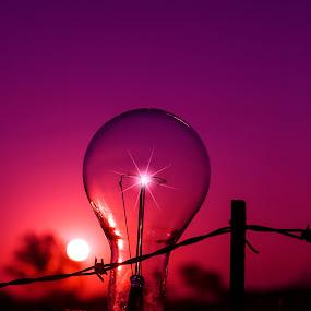 Pink light for cancer by Lana Nolte - Landscapes Sunsets & Sunrises ( sunset, awareness, pink, cancer, globe, breast cancer awareness, lighting, lights, mood factory, hot pink, mood, scents, color, mood-lites, sassy, brighten our world )