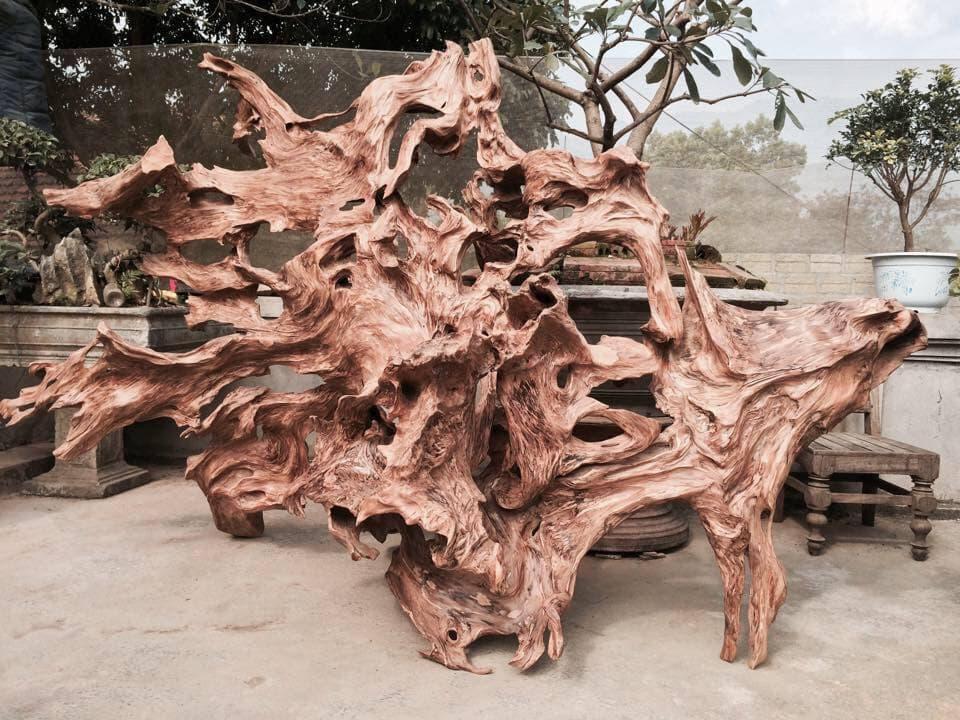 Thế nào là gỗ lũa