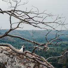 Wedding photographer Viktor Zapruda (zapruda). Photo of 13.09.2017