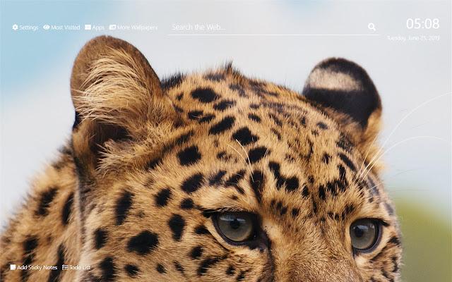 Snow Leopard Wallpaper HD New Tab Theme