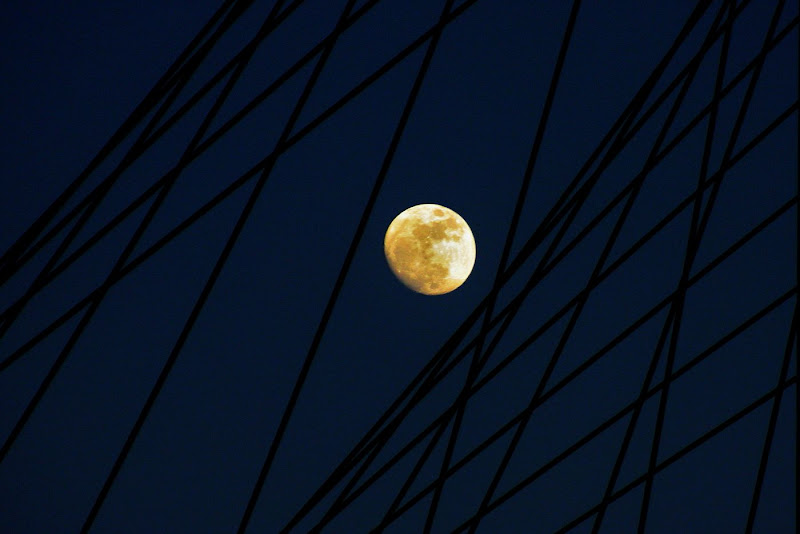 Luna prigioniera di paolo-spagg