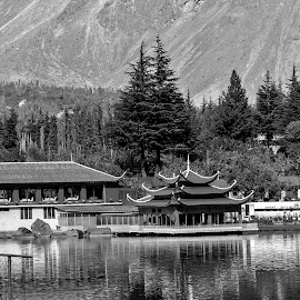 by Mohsin Raza - Black & White Landscapes (  )