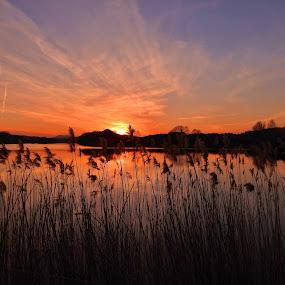 Západ nad rybníkem by Věra Tudy - Landscapes Sunsets & Sunrises