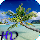 Beach HD Video Live Wallpaper