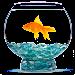 AquariumDiary icon