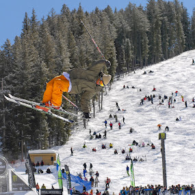 Skiing at the x-games in Sun Valley, Idaho Orange by Tory Taglio - Sports & Fitness Snow Sports ( half pipe, idaho, skiing, sun valley, pwcwintersport, x-games )