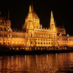 Hungarian Parliament at night by Sonja Cvorovic - Buildings & Architecture Public & Historical ( landmark, travel )