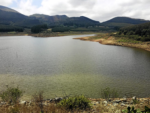 Dams levels drop, water crisis looms - SowetanLIVE