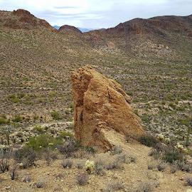 Lonely Rock by Tom MostlyGerman - Landscapes Deserts