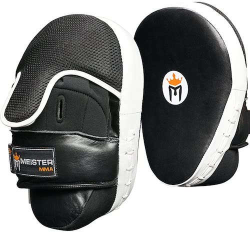 Best Focus Mitts For Boxing & MMA 2