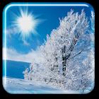 冬ライブ壁紙 icon
