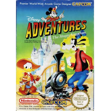 Adventures in The Magic Kingdom
