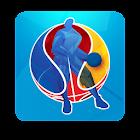 EuroBasket 2015 icon